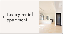 High-quality rental apartment